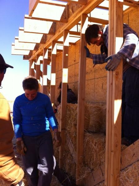 We all enjoyed the installing job.