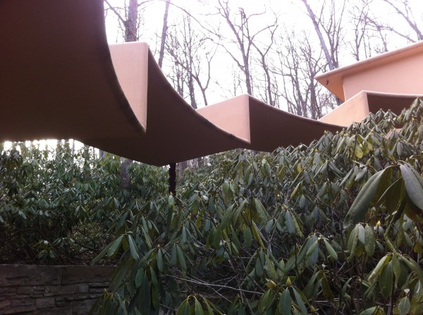 the roof of canopied walkway