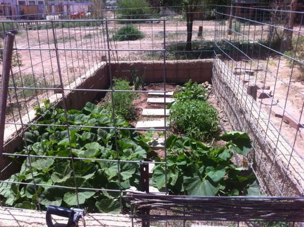 two month before, it's garden!